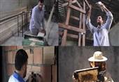 طلبه همهفن حریف چطور به جنگ بیکاری رفت؟ از برقکاری و زنبورداری تا کارآفرینی با چوب