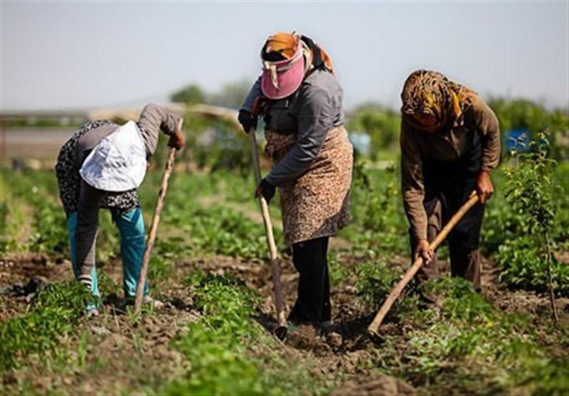 لزوم ریلگذاری صحیح اقتصاد روستاییان/ مجلس از اقدامات احساسی درباره روستاها پرهیز کند