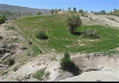 منابع طبیعی استان کرمانشاه علیه تیغ تیز شخم بر اراضی ملی برخورد قاطعانه دارد