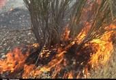 یکی از امدادگران هلال احمر اردل در آتشسوزی جنگلهای کوه بلوط بلند جان باخت
