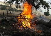 نیروهای تخصصی آتشنشانی تهران به کمک جنگلها و مراتع کهگیلویه و بویراحمد میشتابند