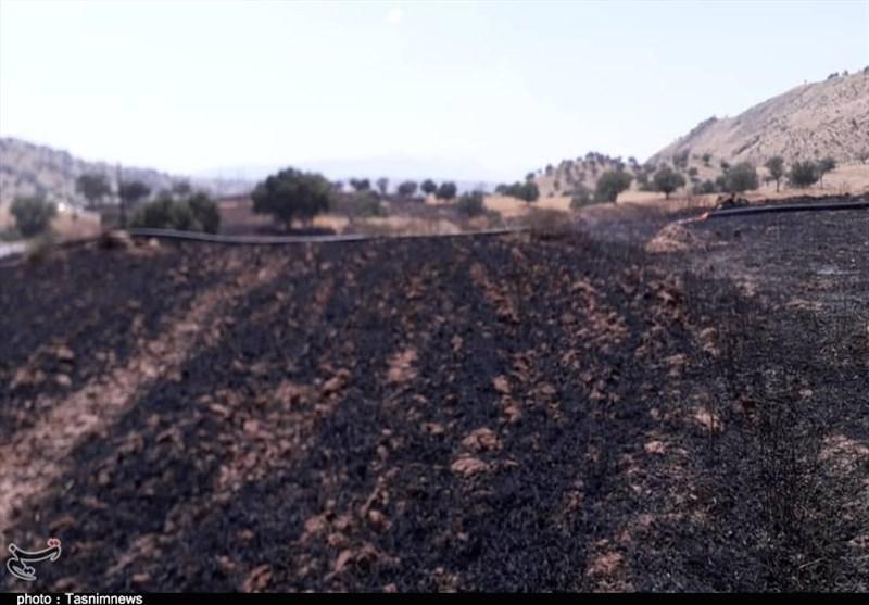 خرمن مزارع شهرستان باشت طعمه حریق شد + تصاویر
