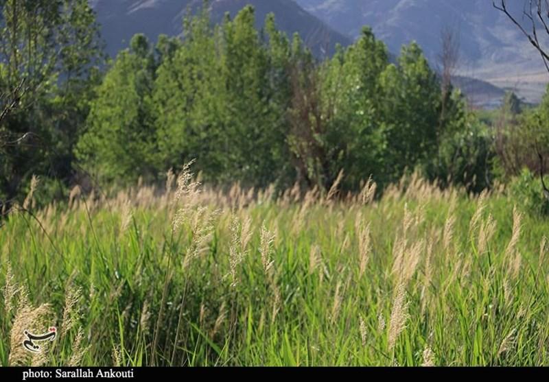 استان کرمان , آب و هوا ,