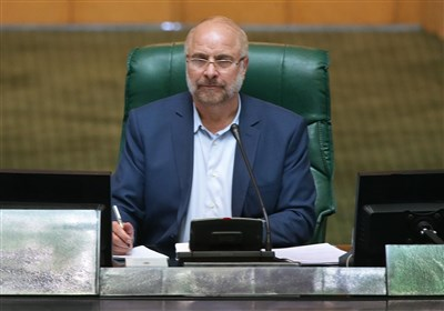 مجلس از واگذاریهای درست به بخش خصوصی دفاع و با تخلفات برخورد میکند