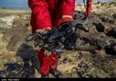یک محقق ایرانی توانست با پوست گردو آلایندههای نفتی را حذف کند!