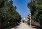 انشعاب آب خانهباغها و باغ ویلاهای استان بوشهر قطع شد