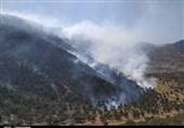 یاسوج| آتشسوزی جنگلهای سروک با همکاری سپاه بویراحمد مهار شد