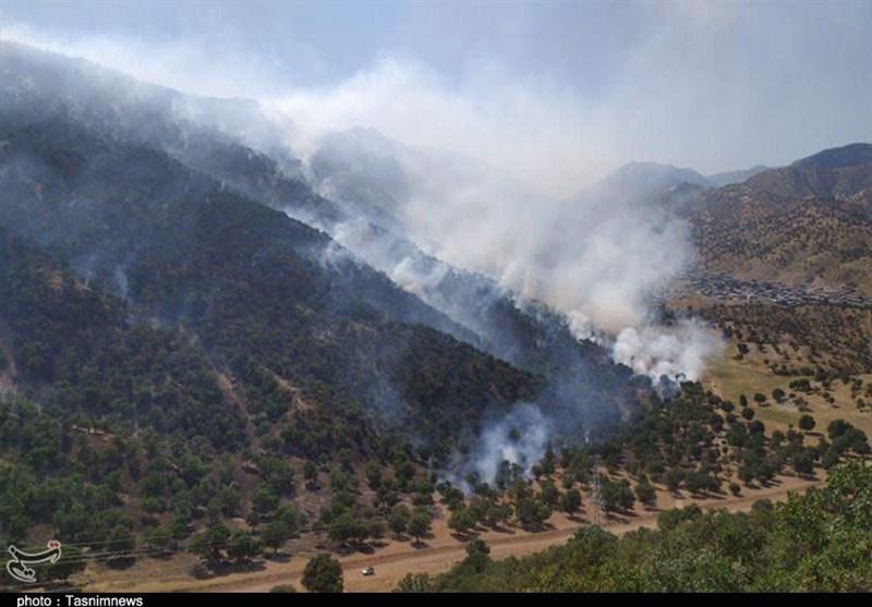 """مهار آتش در """"میانجنگل"""" فسا؛ 50 هکتار از منطقه حفاظت شده آسیب دید"""