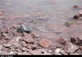 وسعت دریاچه ارومیه به کمتر از 3 هزار کیلومترمربع رسید