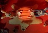 3 حضور بینالمللی برای انیمیشن «خورده شده»