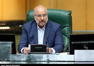 Foiling Sanctions Iran's Main Tactic: Parliament Speaker