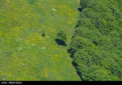 طبیعت بهاری منطقه ارسباران