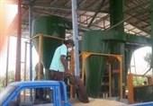 مراکز بوجاری آذربایجانغربی حق فروش بذر را ندارند