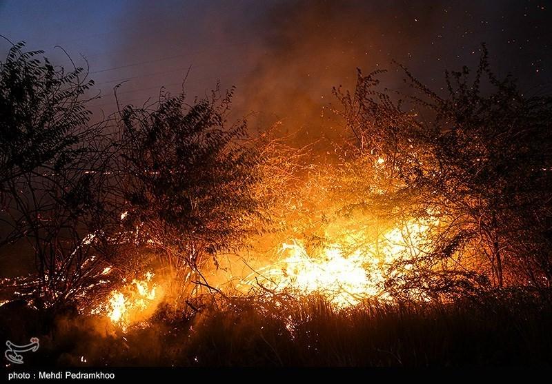 تازهترین جزئیات آتشسوزی در زیستگاه قوچ و میش خوزستان؛ 15 هکتار از اراضی در آتش سوخت