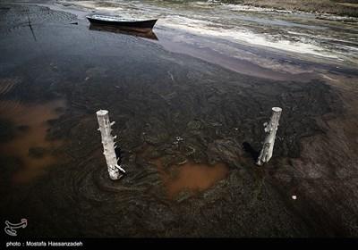 مرگ تدریجی سواحل استان گلستان