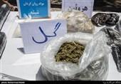 رئیس پلیس مبارزه با موادمخدر: مخدر نوظهور نداریم
