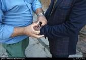 دستگیری 2 عضو دیگر شورای شهر 5 نفره لواسان / تمام اعضا بازداشت شدهاند