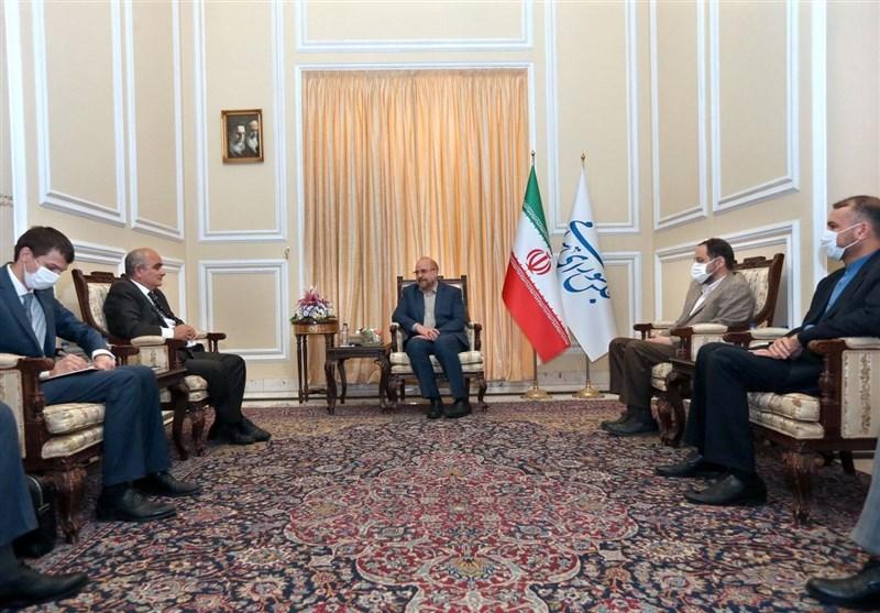 Claims Raised in IAEA Resolution on Iran Illegal: Speaker
