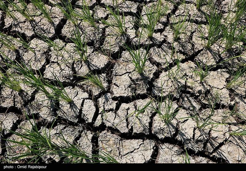 زنگ خطر خشکسالی و کم آبی به شهرهای مرزی خراسان رضوی رسید