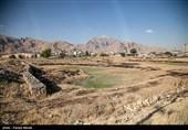 صدور اسناد تک برگ مانع جدی گسترش روند زمینخواری در مشهد است