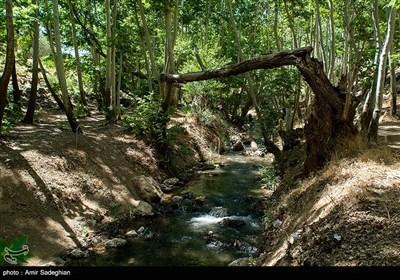 طبیعت روستای دشتک –فارس