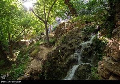 آبوهوای این روستا در بهار و تابستان معتدل و در پاییز و زمستان سرد است. روستای کوهستانی دشتک با اقلیم معتدل، پوشش جنگلی، باغات وسیع، چشمهساران فراوان، آبشارهای زیبا و مناظر و چشماندازهای دلنواز، بهویژه در فصلهای بهار و تابستان، فضای بسیار جذابی را پدید میآورد.
