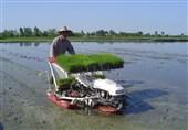انتقاد رئیس جهاد کشاورزی کاشان از نگاه انقباضی مسئولان به بخش کشاورزی