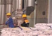 میزان تولید سالانه کودهای فسفاته در استان بوشهر به 300 هزار تن افزایش مییابد