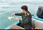 Iran Remembers 290 Passengers, Crew Killed in US Downing of Civilian Plane