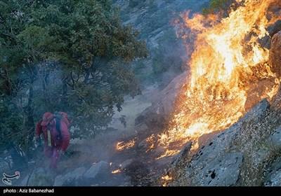 آتش سوزی در جنگلهای بلوط بلند شهرستان اردل/ صدها هکتار جنگل در حال نابودی است