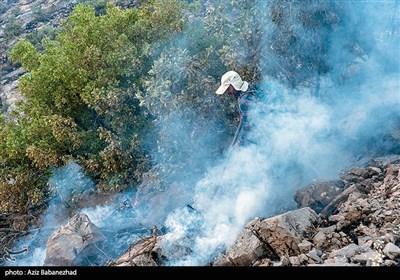 بیش از ۱۶۰۰ اطفاء آتشسوزی در اراضی جنگلی و مرتعی کشور
