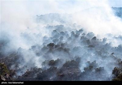 آتش سوزی در جنگلهای بلوط منطقه سفید کوه خرم آباد