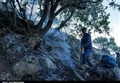 3 نفر از عاملان بروز آتشسوزی در منطقه جنگلی نمین دستگیر شدند