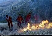 31 فقره آتشسوزی در مراتع استان فارس اتفاق افتاده است