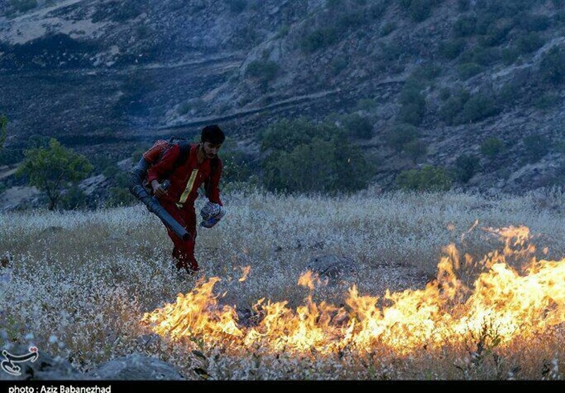 سامانه خودکار پیشبینی آتشسوزی در عرصههای طبیعی طراحی شد