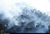 آتش در جنگلهای خرمآباد به روایت تصویر