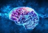 Study Finds Rise in Delirium, Nerve Damage among Coronavirus Patients