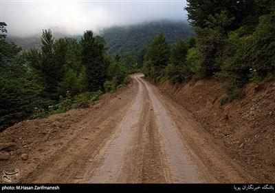 مسیر روستا کاملا کوهستانی وگاها در مسیر شیب بسیار زیاد می شود