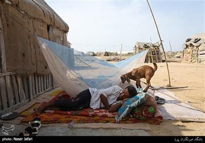 حاشیه نشینان مناطق میرآباد و عثمان آباد در حاشیه سفر پرویز فتاح به استان سیستان و بلوچستان