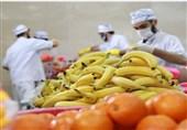 قیمت میوه و ترهبار در یزد امروز چهارشنبه 8 مردادماه + جدول