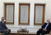 دیدار خداحافظی سفیر اسپانیا با ظریف