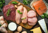 Meat-Eating Boosts Muscle Health Better than Plant-Based Diet: Study