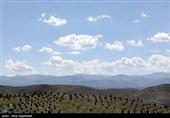 پروژه «کوه پارک» در ارتفاعات جنوبی مشهد به روایت تصاویر