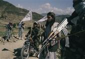 چرا طالبان درخواست آتشبس دائم را نمیپذیرد؟