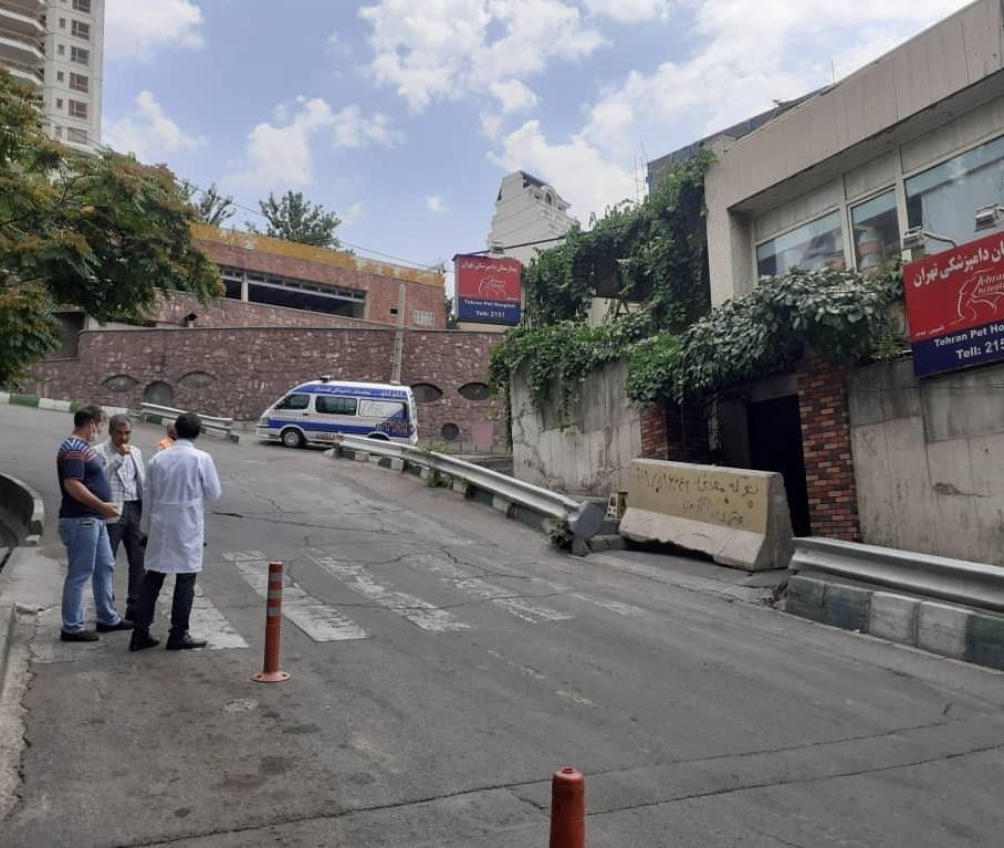شهرداری تهران , سازمان دامپزشکی کشور ,