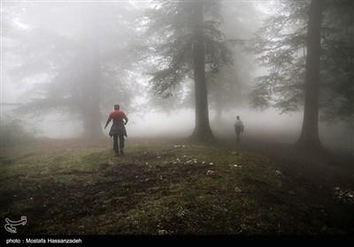 پنجمین روز عملیات جستجو برای یافتن دختر گمشده در ارتفاعات جهاننما در گلستان