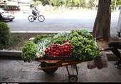 عرضه مواد غذایی روباز در غفلت نهادهای نظارتی به روایت تصویر
