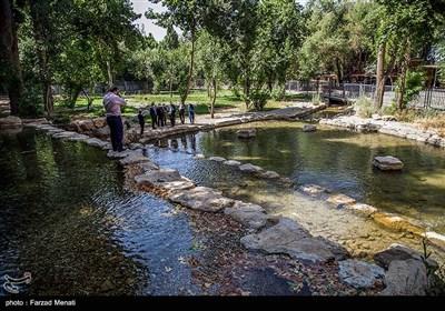 افتتاح موزه سنگی طاقبستان در کرمانشاه