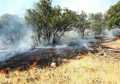 مهار آتشسوزی در ارتفاعات ثلاثباباجانی/ بیش از ۱۰ هکتار از مراتع و جنگلها طعمه حریق شد