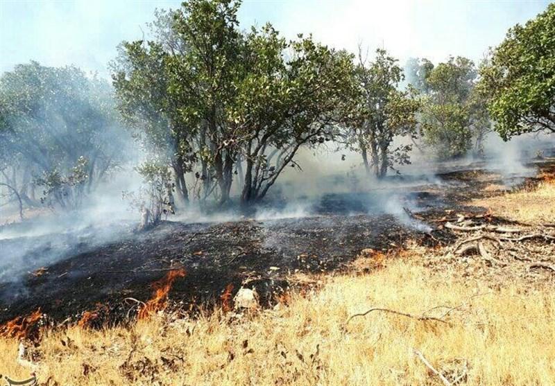 مهار آتشسوزی در ارتفاعات ثلاثباباجانی/ بیش از 10 هکتار از مراتع و جنگلها طعمه حریق شد